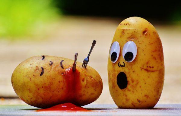 8 עובדות מדהימות על אוכל שלא ידעת
